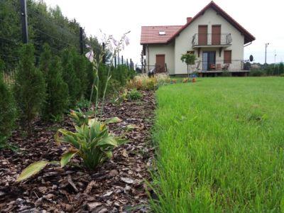 realitydesigner_pl- zakładanie ogrodów hałcnów